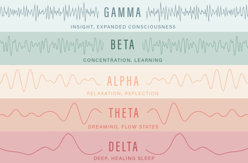 Different types of brain waves
