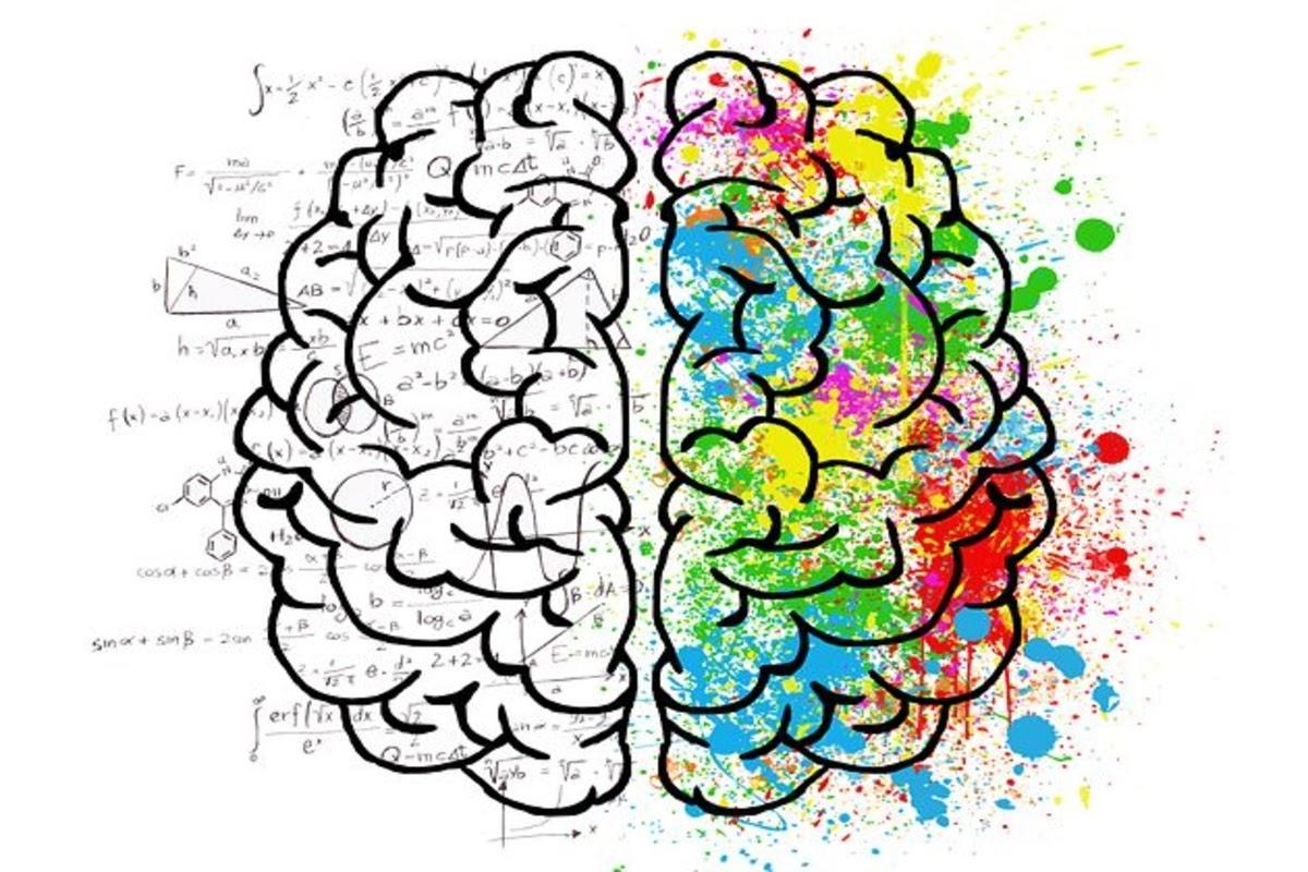 Photo of left brain vs right brain