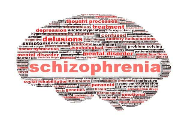 schizophrenia brain