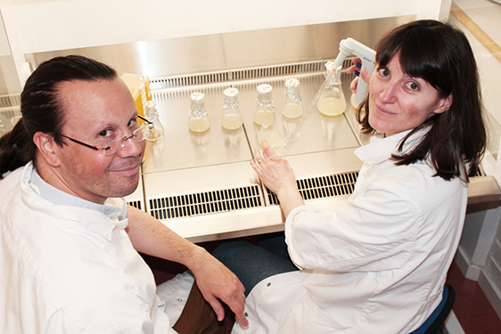 Edouard Pesquet och Delphine Ménard, forskare inom Bio4Energy som ansvarat för studien. Foto: Anna Strom