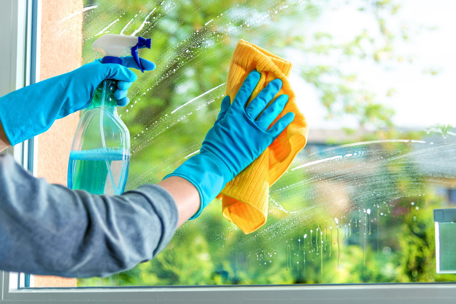 Professional Window Cleaning at Home