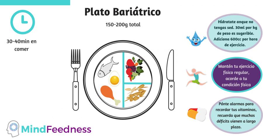 Plato bariátrico postoperatorio 2 meses en adelante: 250-200g de porción. Un plato representa mitad de cantidad en proteínas, un cuarto de cereales integrados y un cuarto de frutas frescas y/o legumbres frescas. Se tarda de 30-40 minutos en comer.