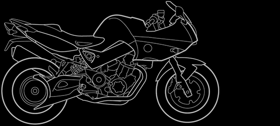 Illustration of a BMW F 800 S