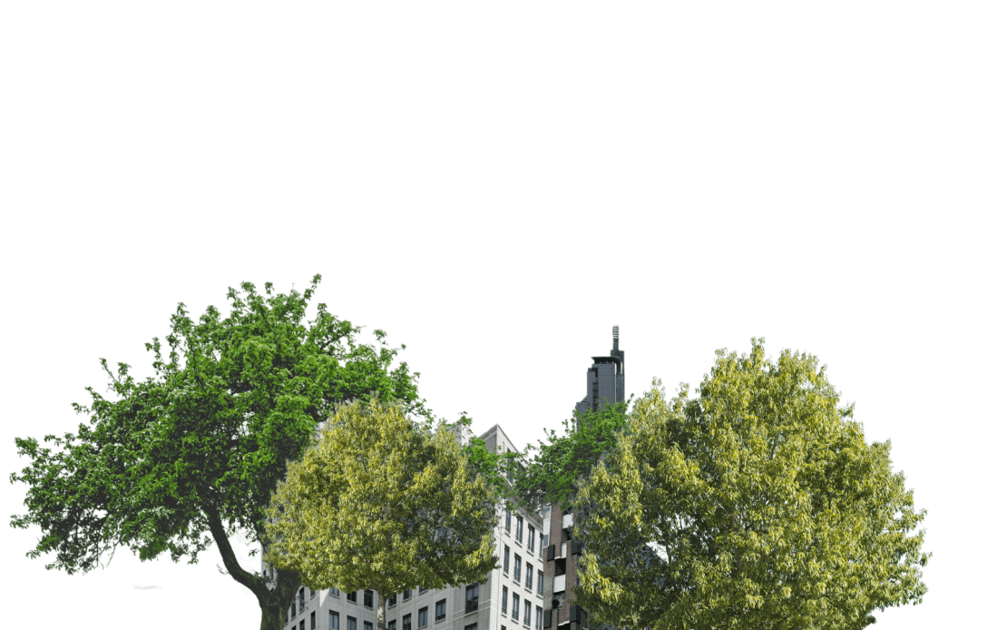 City and trees