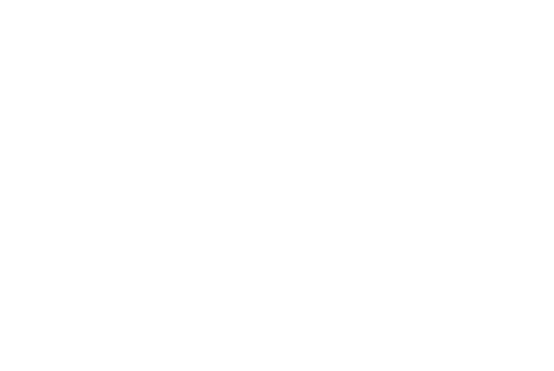 Polaris One Logo