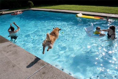 Ecosmarte Chlorine-free swimming pool