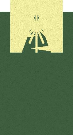 Christmas tree icon.