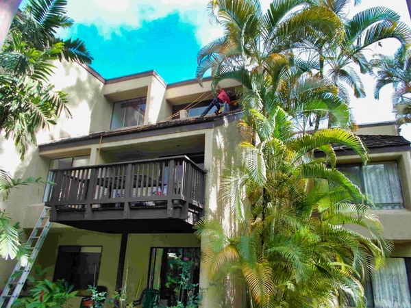 A home surrounded by greenery having its windows cleaned on the second level on Kailua.