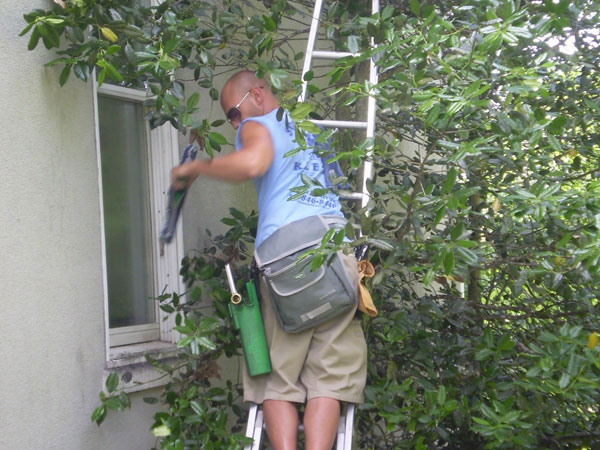Home window cleaning job being done professionally by Squeegee Klean Window Cleaning in Baltimore Maryland.