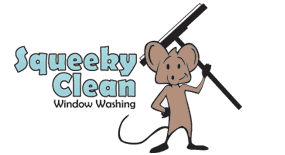 Squeeky Clean Window Washing