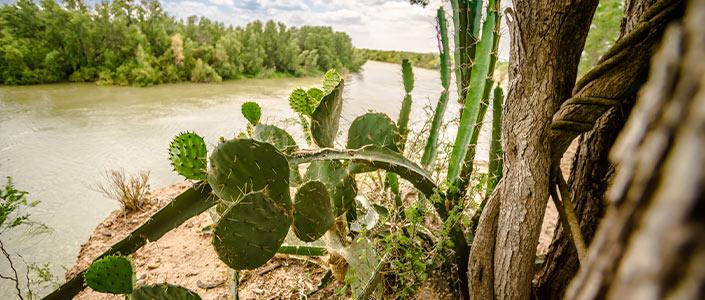 Texas Border in Laredo