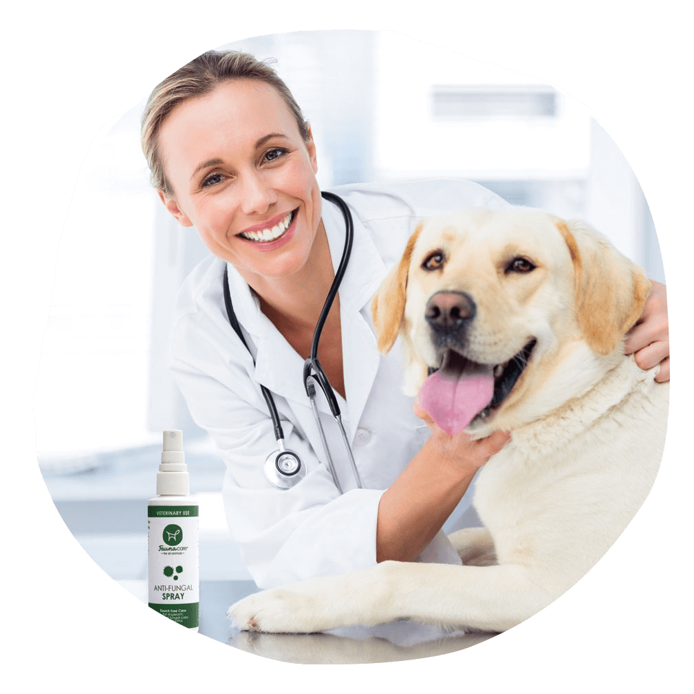 Science Behind Fauna Care Veterinary with Happy dog and anti-fungal Spray