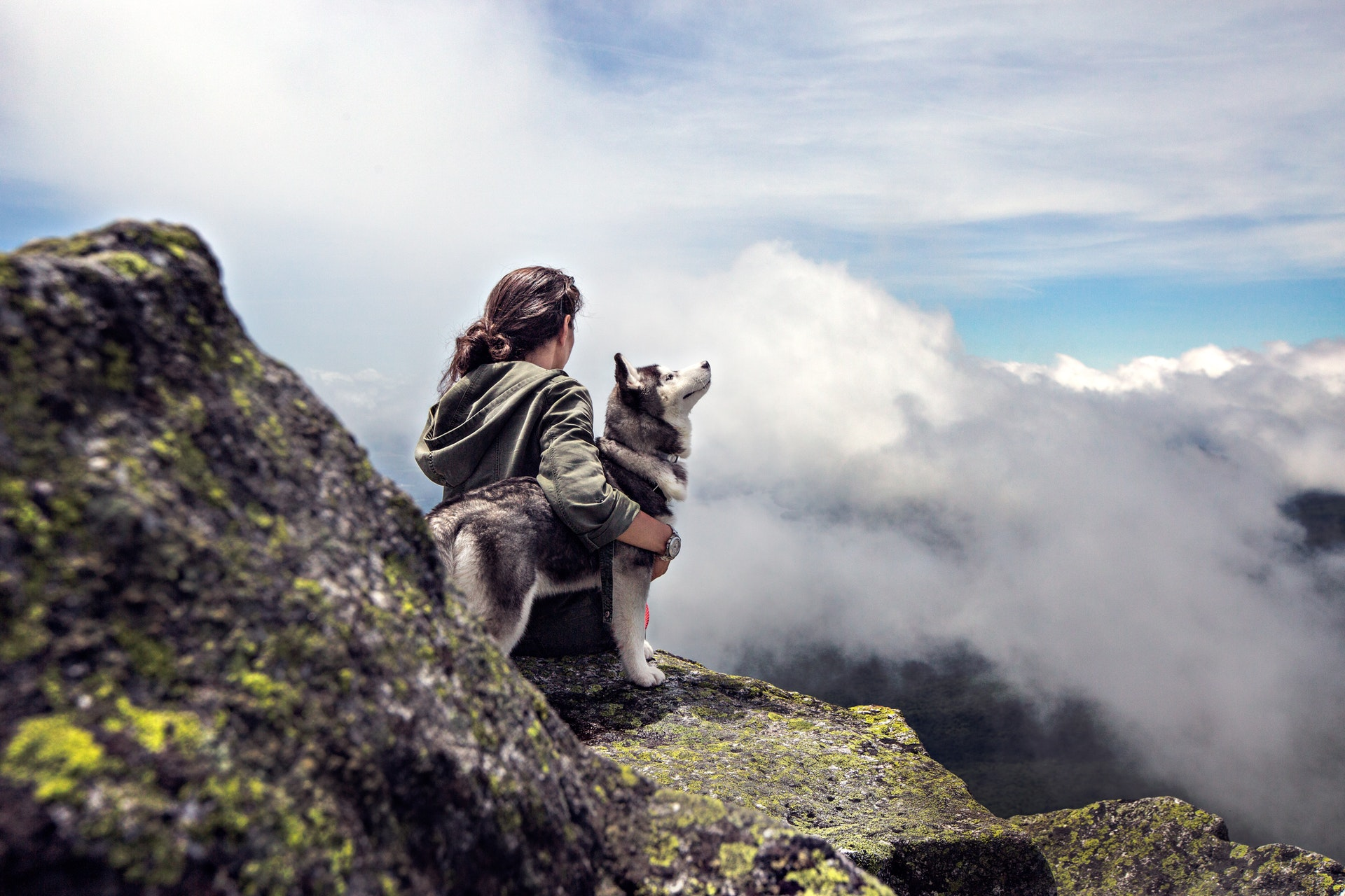 A Guide To Hiking and Dog Care On The Trail