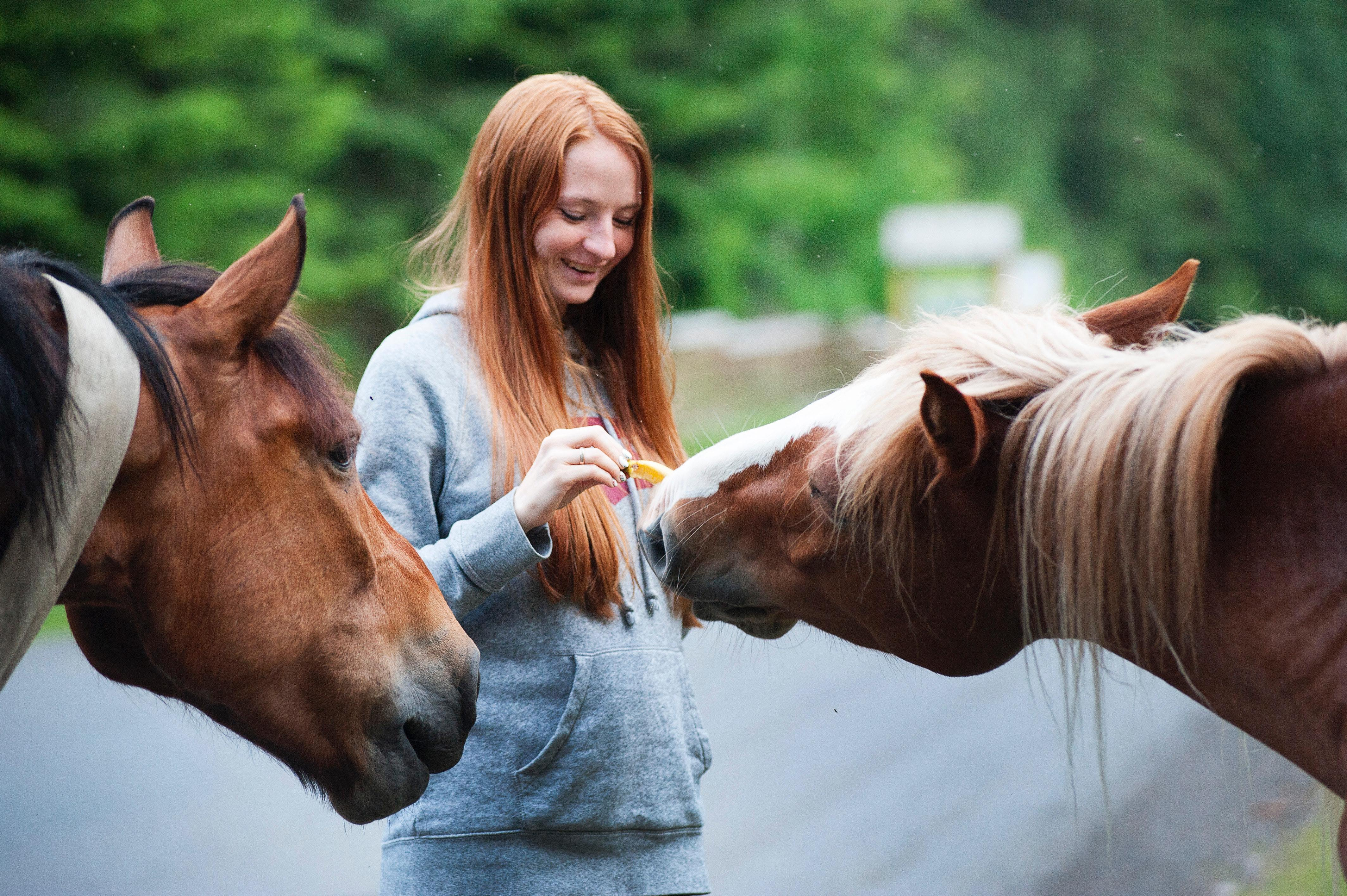 woman with red hair caring for two horses