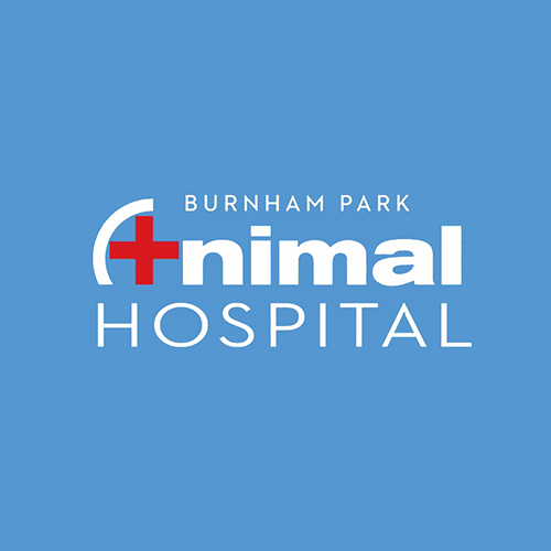 Burnham Park Animal Hospital logo