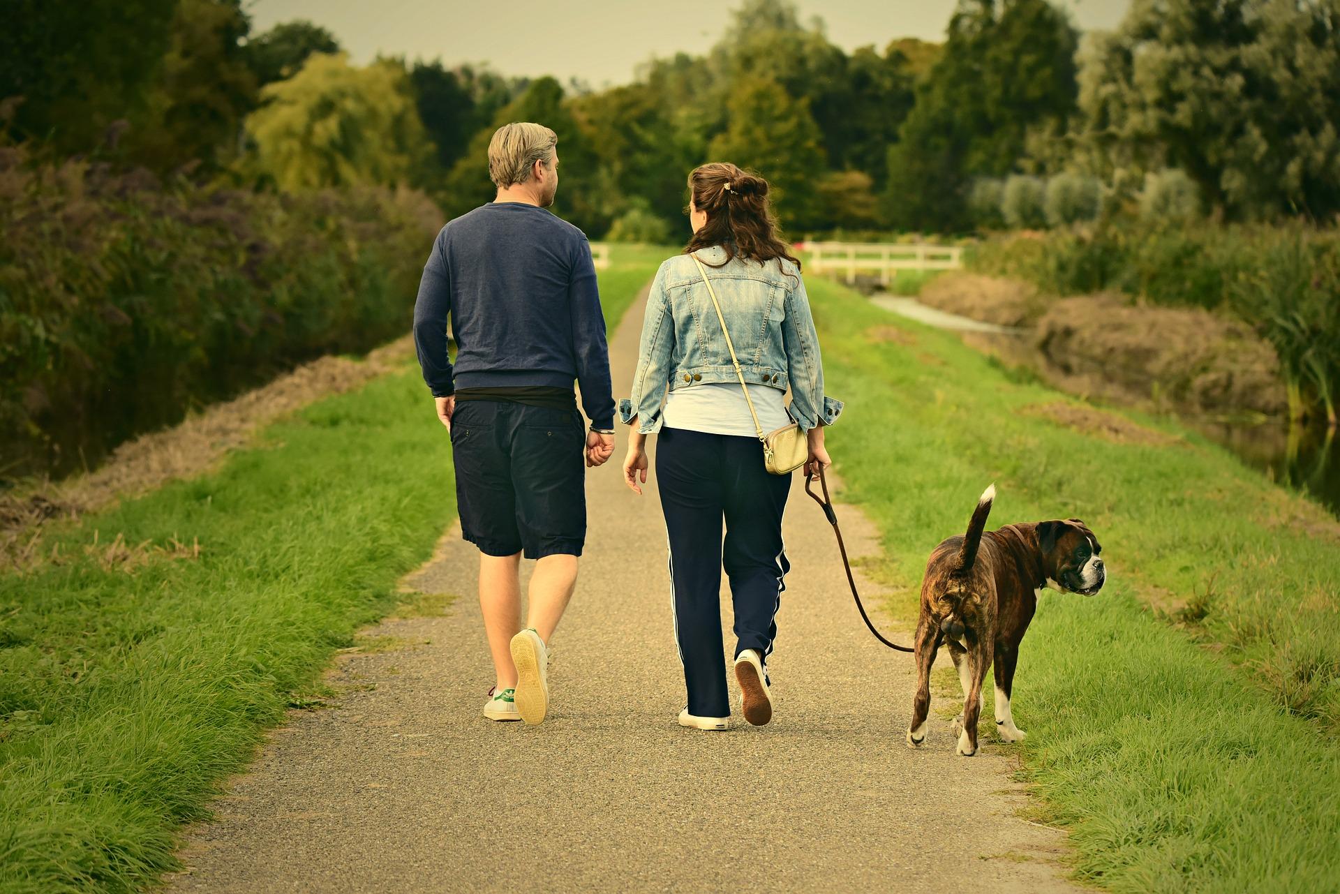 couple & leashed dog walk forward, down trail