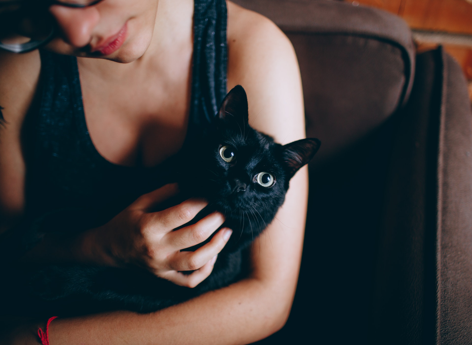 girl holding cat & rubbing its chin