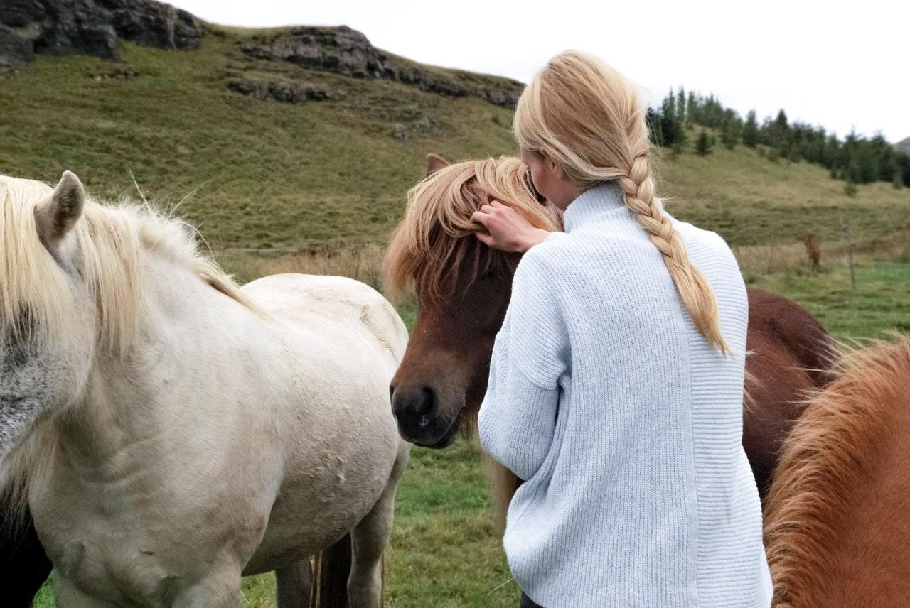 girl running hands through horse's mane