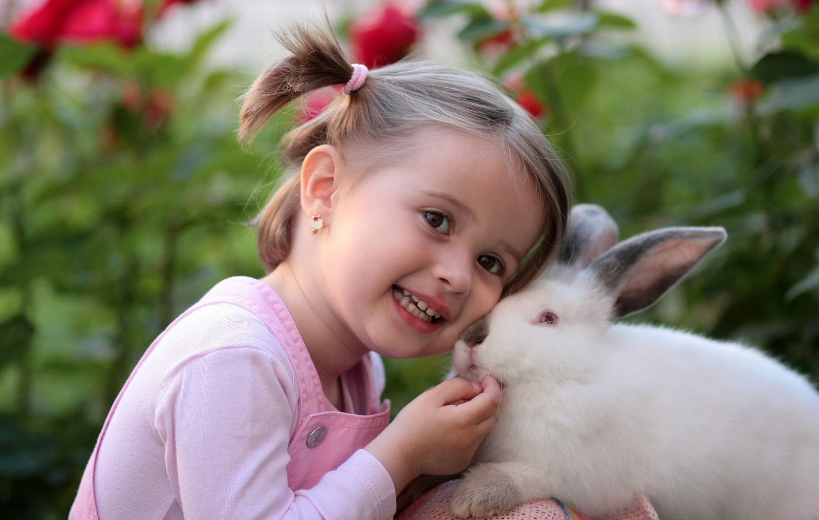 little girl petting rabbit outside