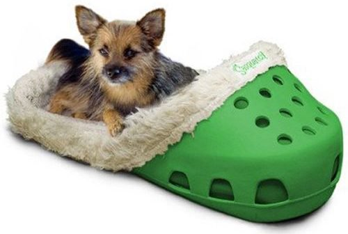 dog laying in crocs bed