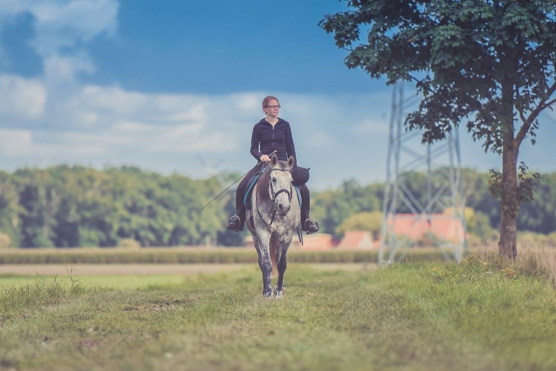 woman riding & exercising horse