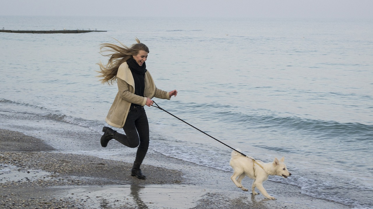 rambunctious, active dog running with owner on beach
