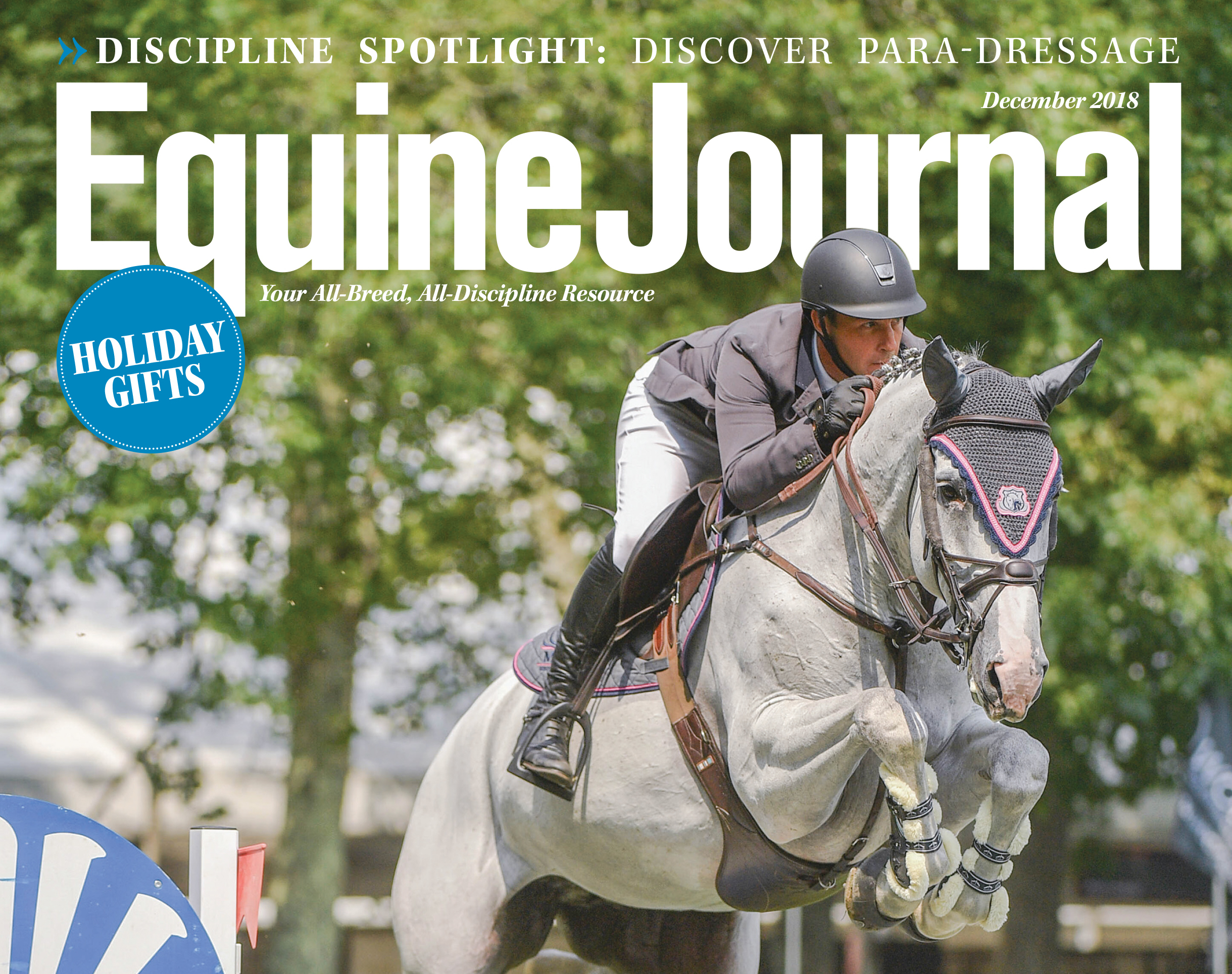 cover of equine journal