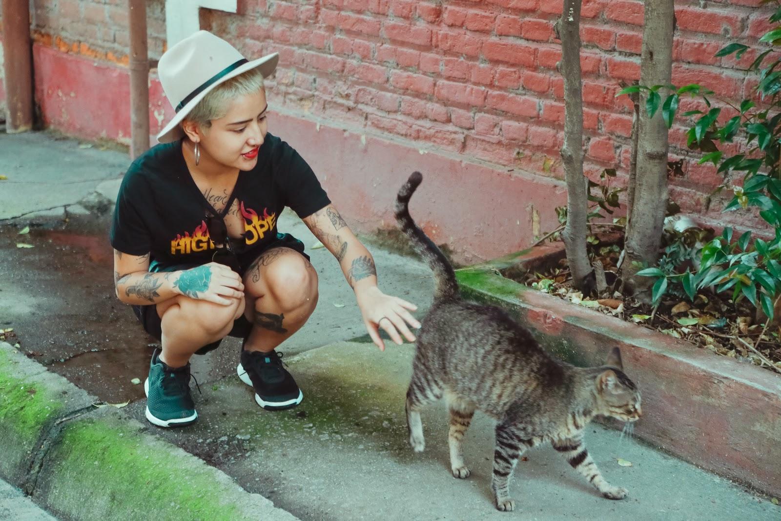 Woman bent down to pet cat that's walking away