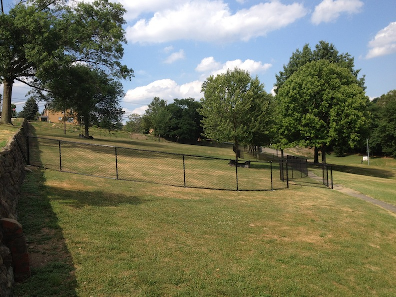 a wide open grassy field for dogs to play in at bernard dog run in Pittsburgh PA