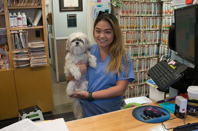 A staff member of Irving Pet Hospital holding a dog