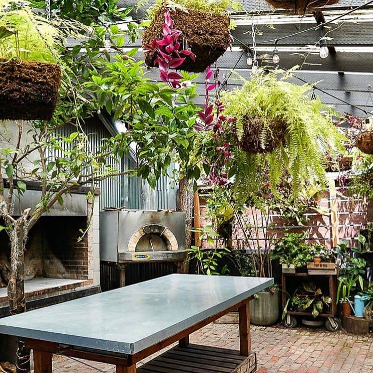Picture of plants at the Stable Cafe