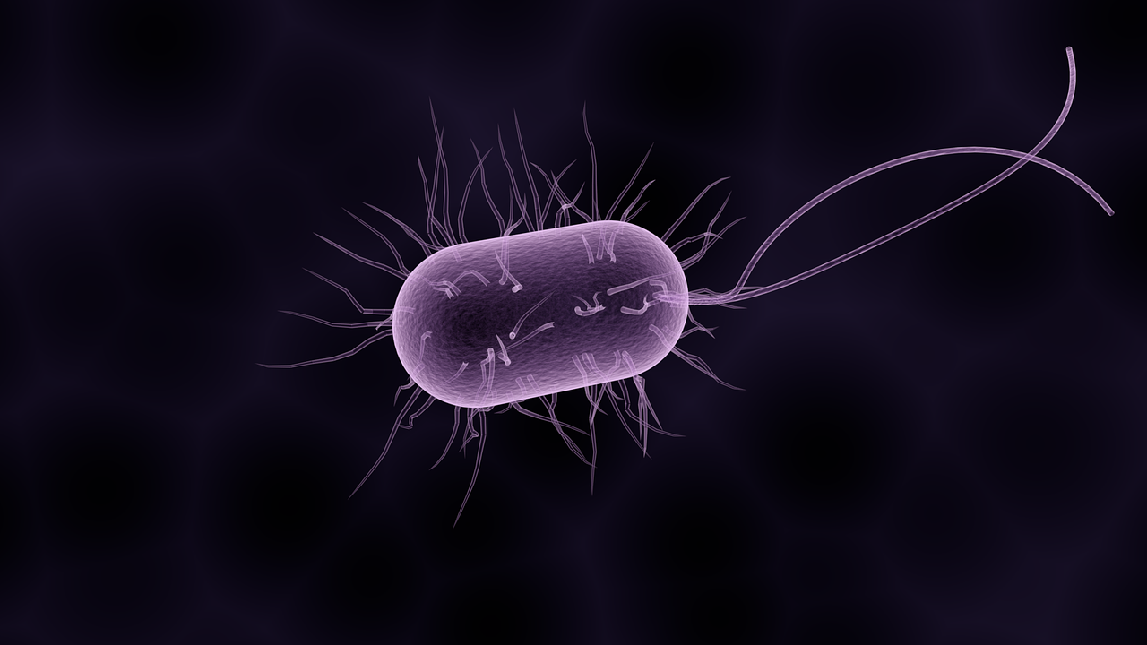 computer rendering of a bacteria cell
