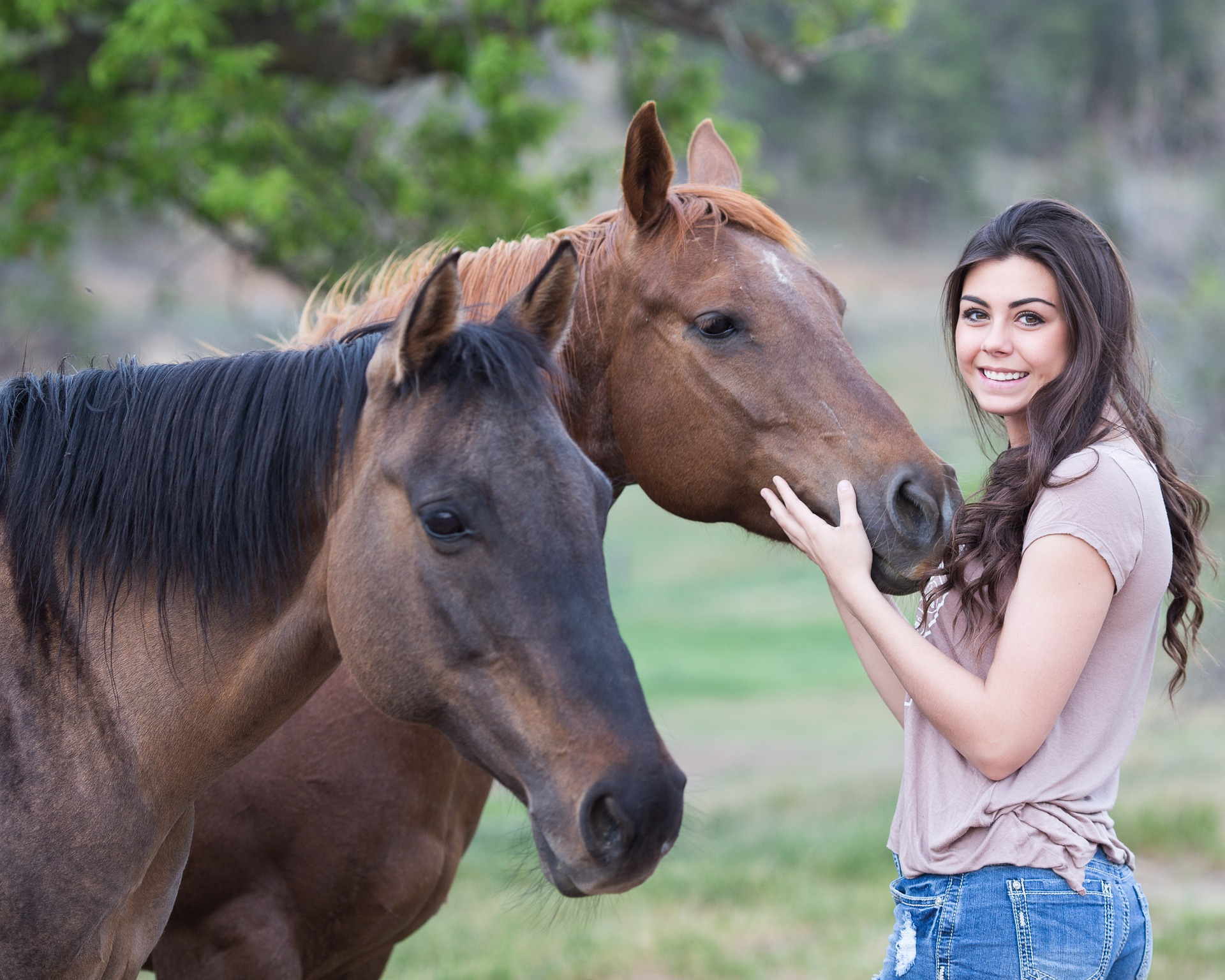 a woman with long brown hair pets two brown horses