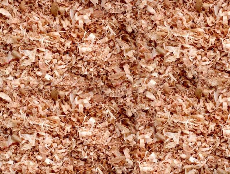 cedarwood shavings