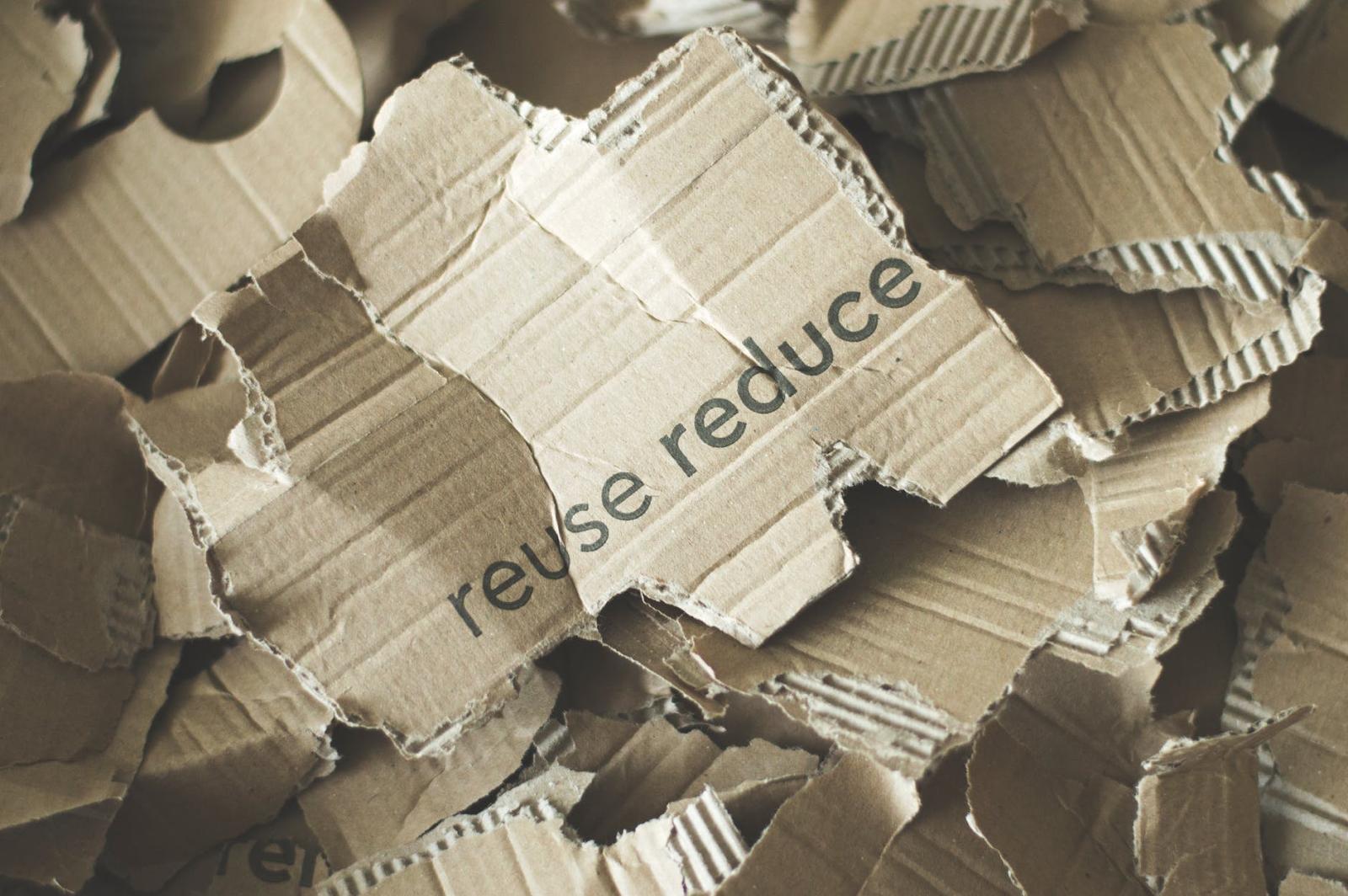 torn up cardboard