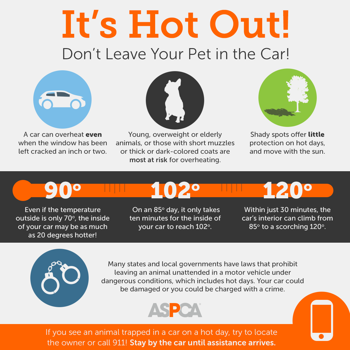 A graphic explaining the dangers of leaving your pet in a hot car