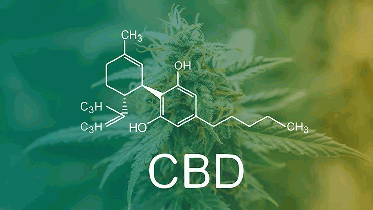 Green and Yellow CBD Chemical Composition