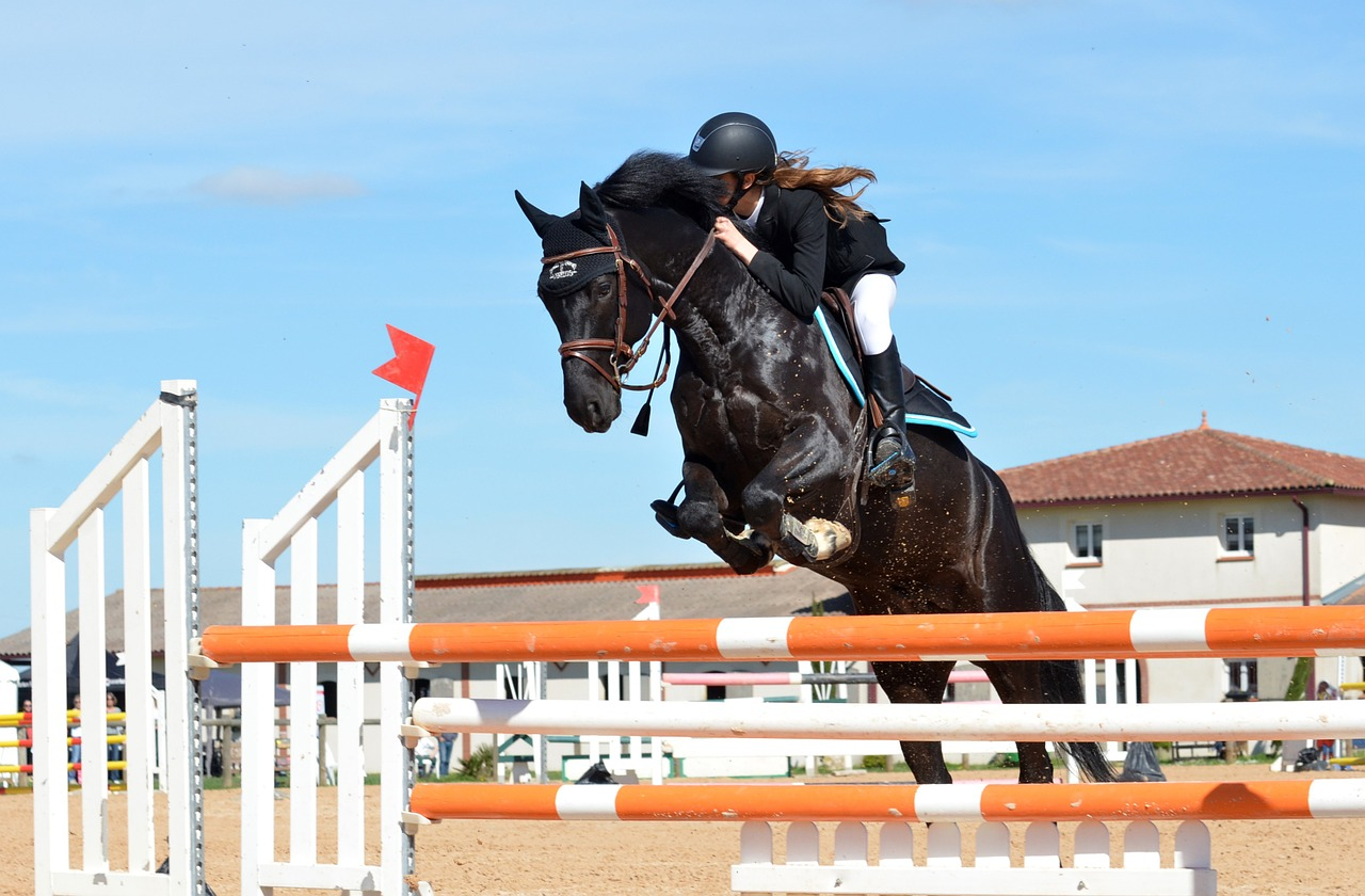 A rider on her horse jumping over a pole