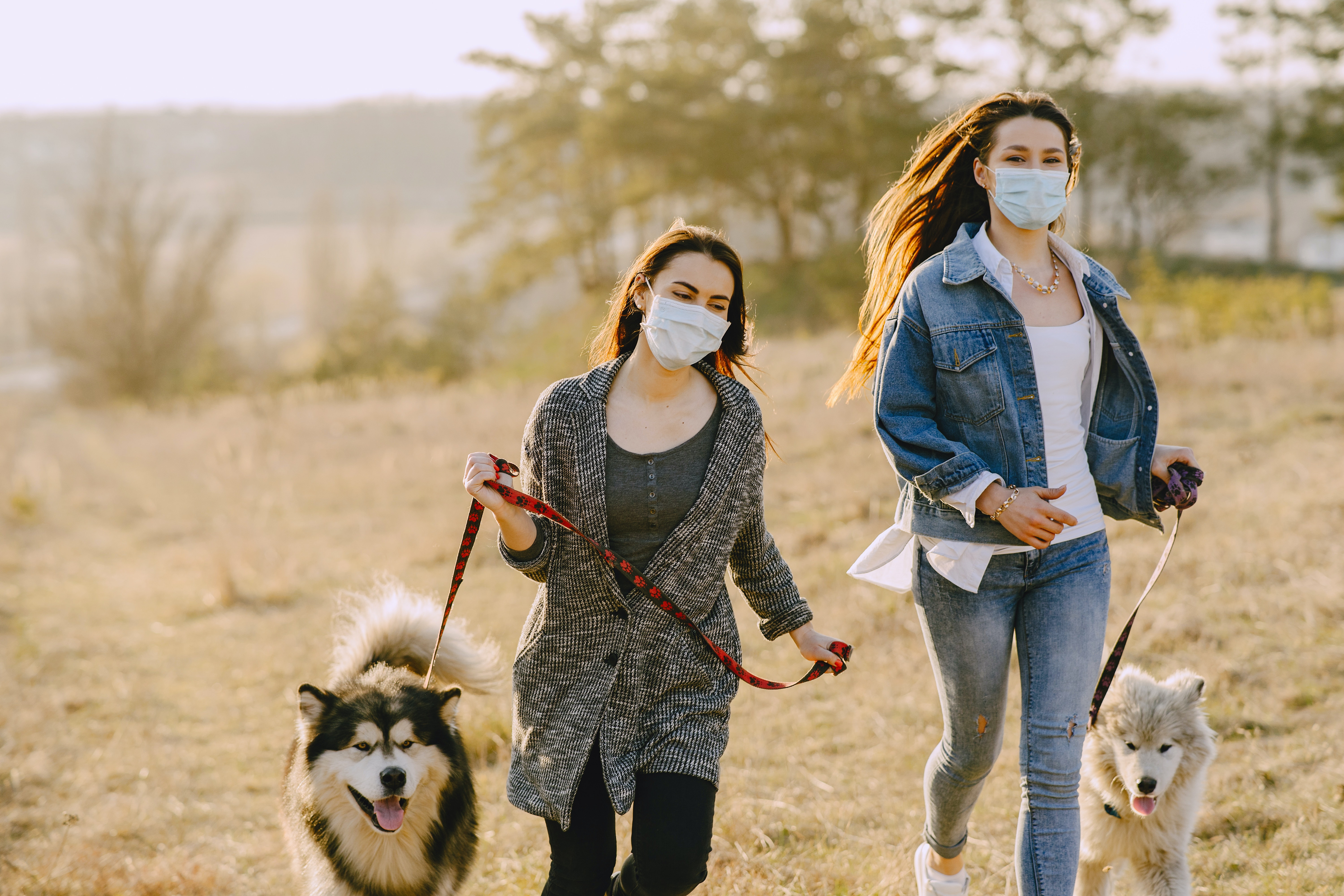 two women wearing masks walk their dogs outside