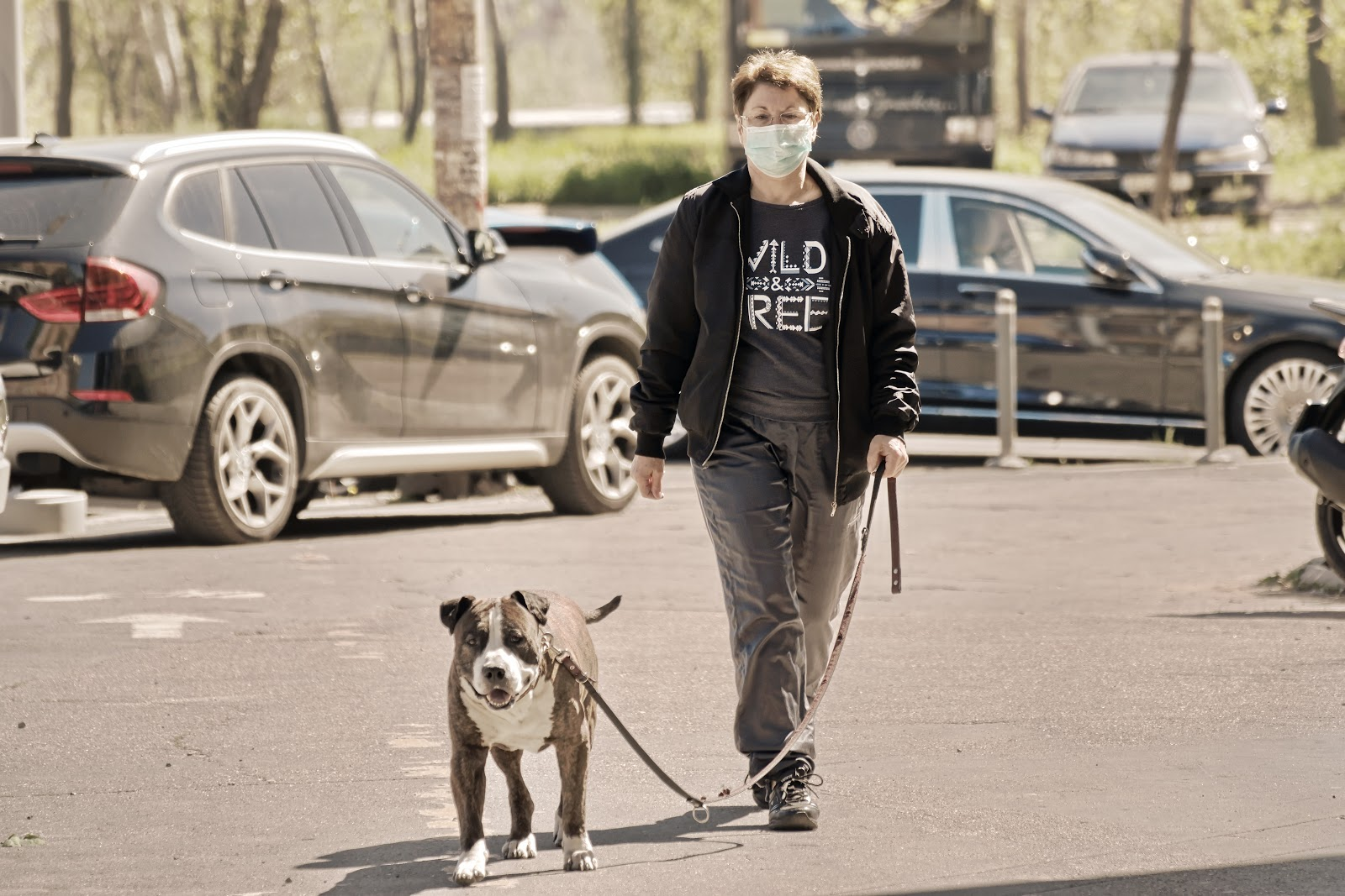 Person in a face mask  walking dog