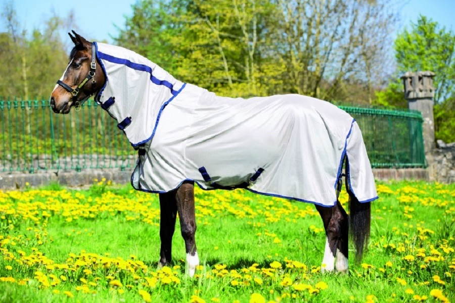 A horse covered by a fly mask that also protects the horse from UV rays