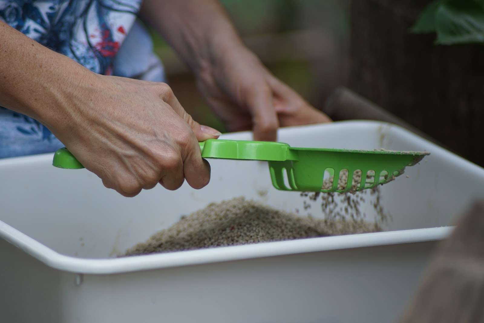 A person scoops cat litter.