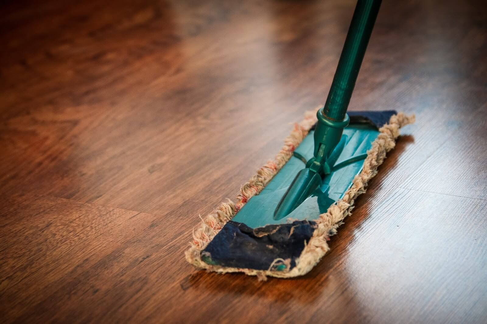 Close-up of a mop on a hardwood floor
