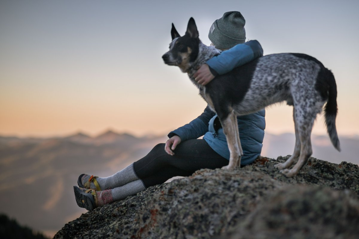 Everything You Need To Know To Hike Safely With Your Dog