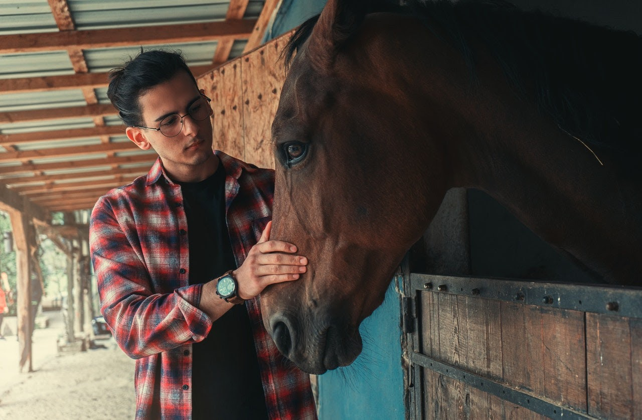 Man petting a horse in its stall