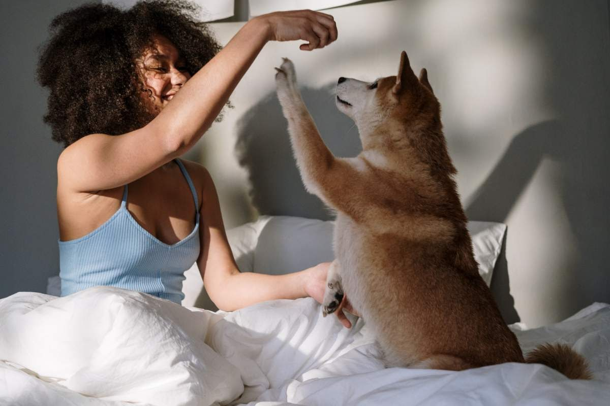 Woman sitting up in bed and playing with her dog.