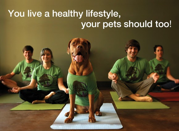 Four people sitting cross legged on yoga mats with a dog in the center also on a yoga mat, all wearing matching tee shirts