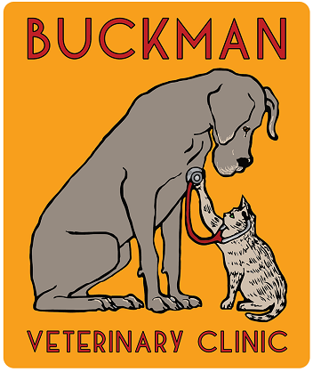 Buckman Veterinary Clinic logo, drawing of a cat listening to a dogs heartbeat with a stethescope