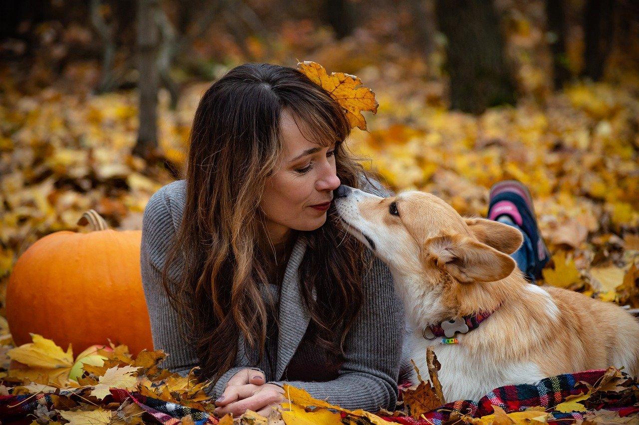A dog and its owner sitting in the woods surrounded by colorful leaves and a pumpkin