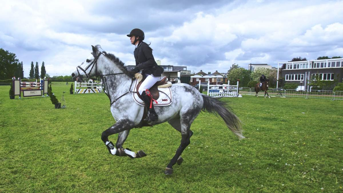 woman riding a black and white speckled horse through a jumping course